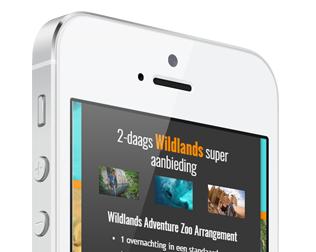Wildlands Adventure Zoo Arrangement